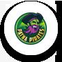 Patna Pirates