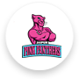 Jaipur Pink Panthers